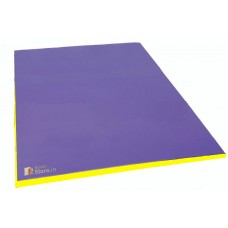 Bi - Coloured  Therapy Mat